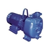 Surface Mounted Wastewater Pumps